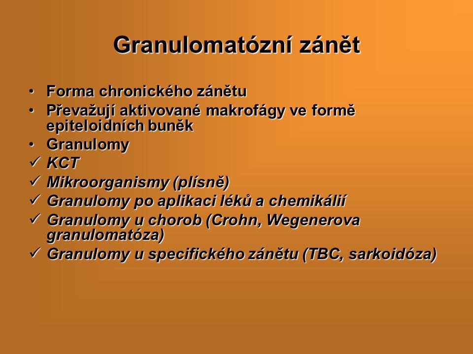 Granulomatózní zánět Forma chronického zánětu