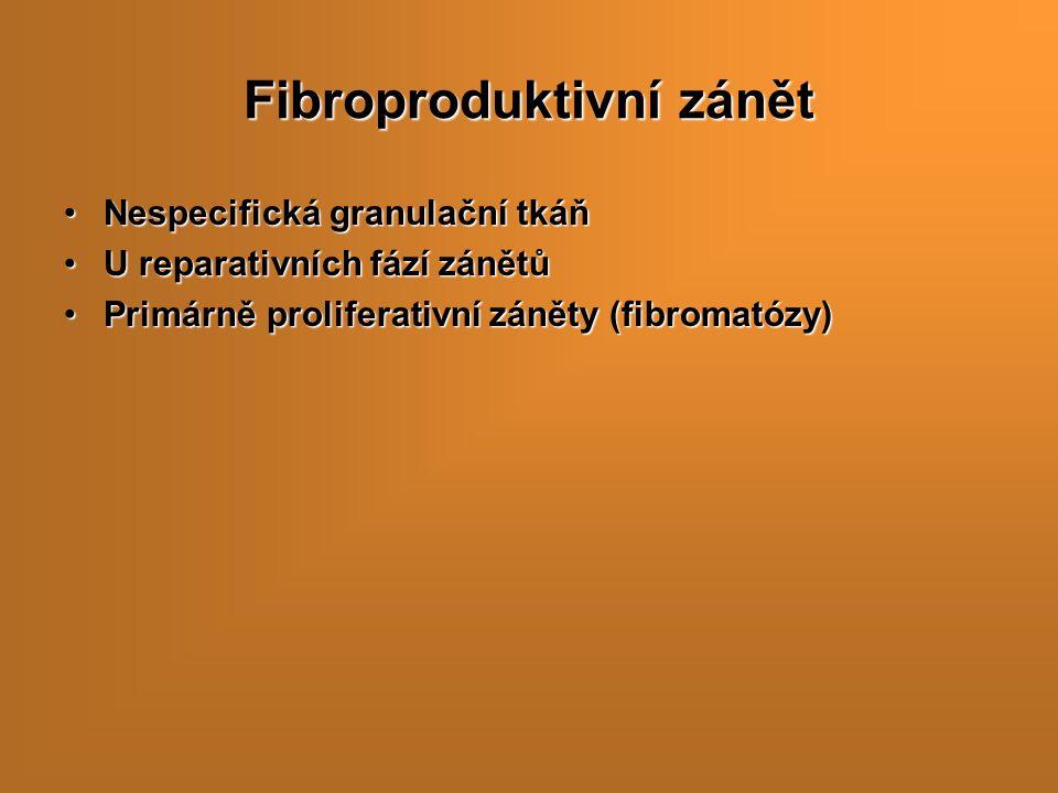 Fibroproduktivní zánět