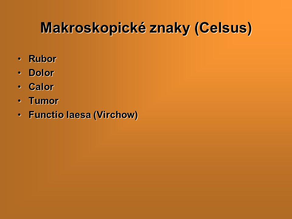 Makroskopické znaky (Celsus)