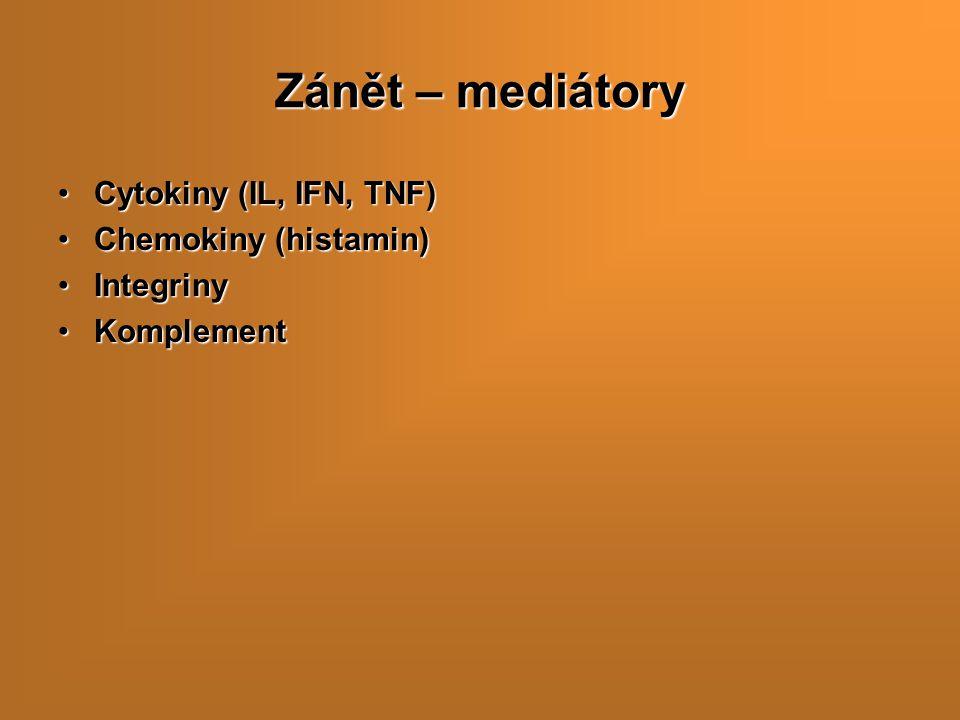 Zánět – mediátory Cytokiny (IL, IFN, TNF) Chemokiny (histamin)