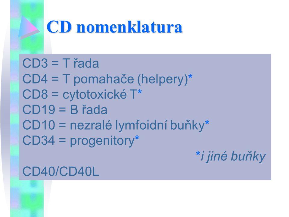 CD nomenklatura CD3 = T řada CD4 = T pomahače (helpery)*
