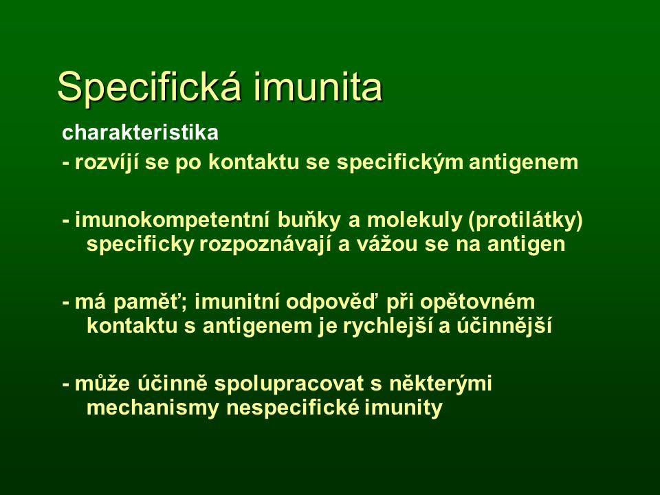 Specifická imunita charakteristika