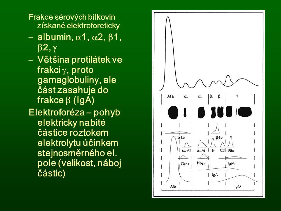 Frakce sérových bílkovin získané elektroforeticky