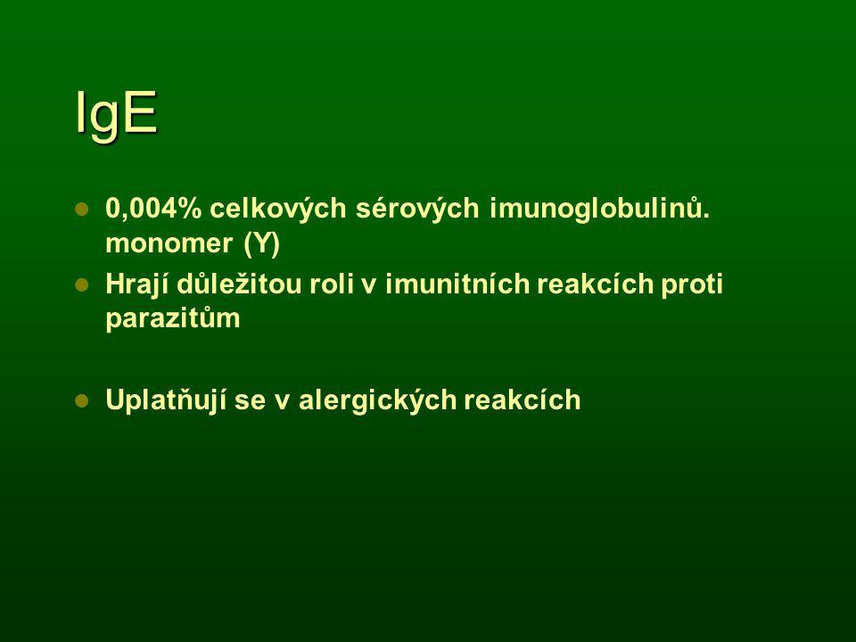 IgE 0,004% celkových sérových imunoglobulinů. monomer (Y)
