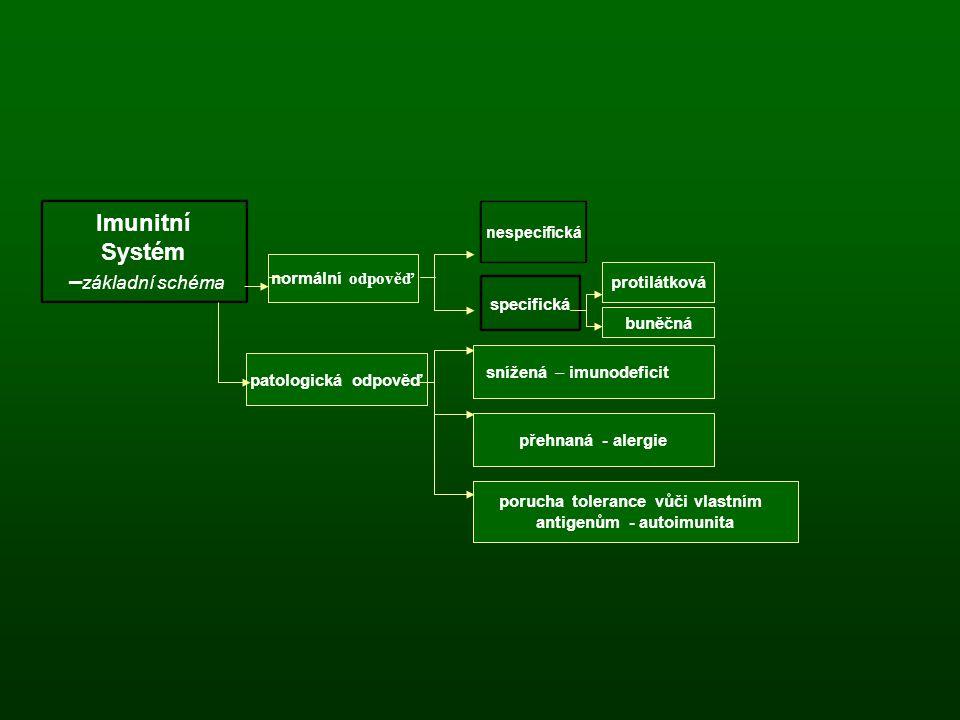 antigenům - autoimunita