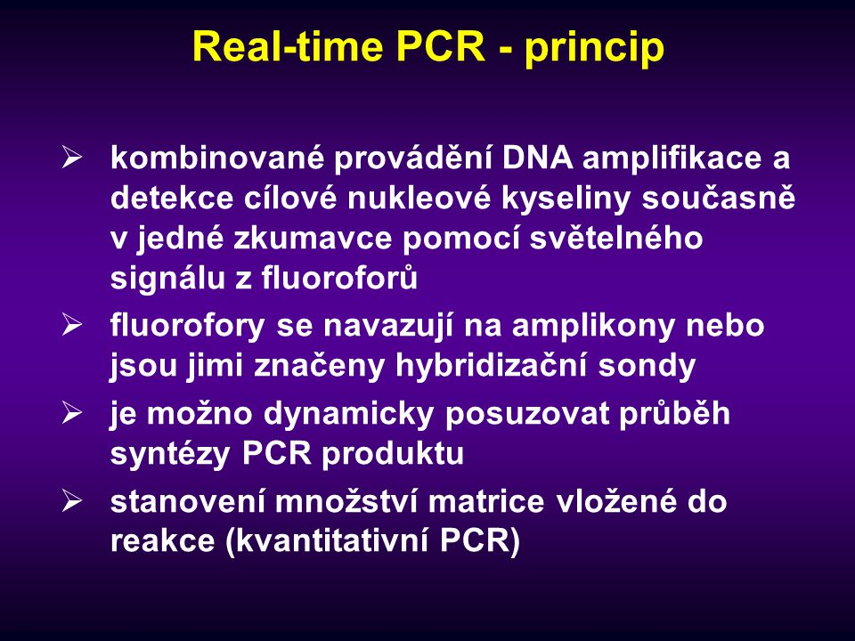 Real-time PCR - princip