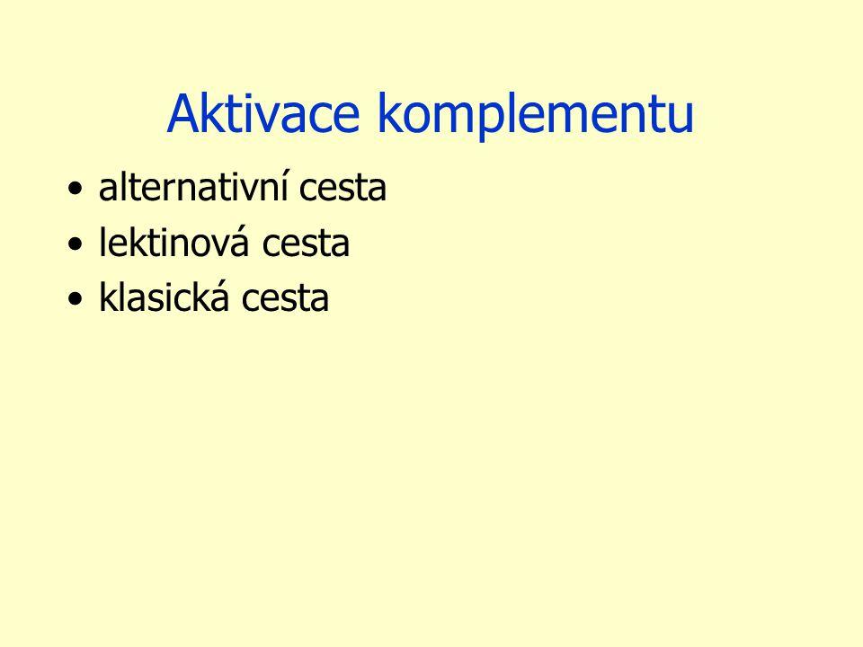 Aktivace komplementu alternativní cesta lektinová cesta klasická cesta