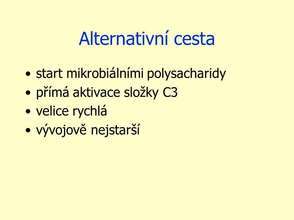 Alternativní cesta start mikrobiálními polysacharidy