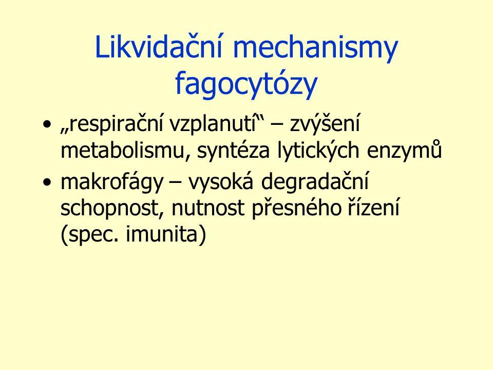 Likvidační mechanismy fagocytózy