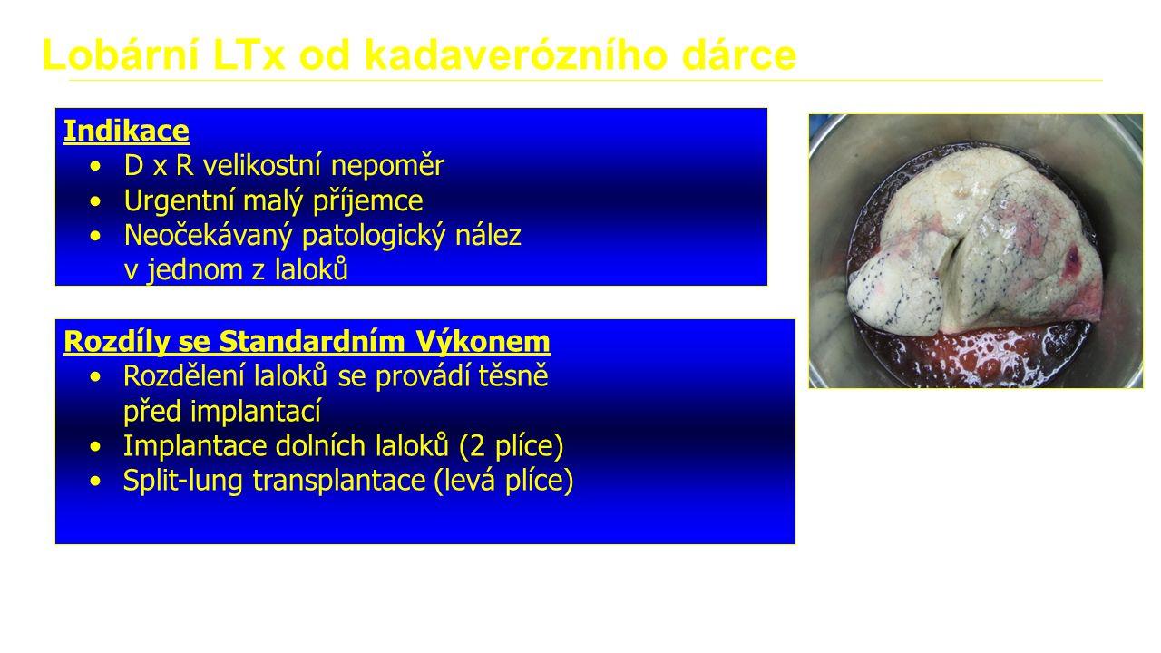 Lobární LTx od kadaverózního dárce