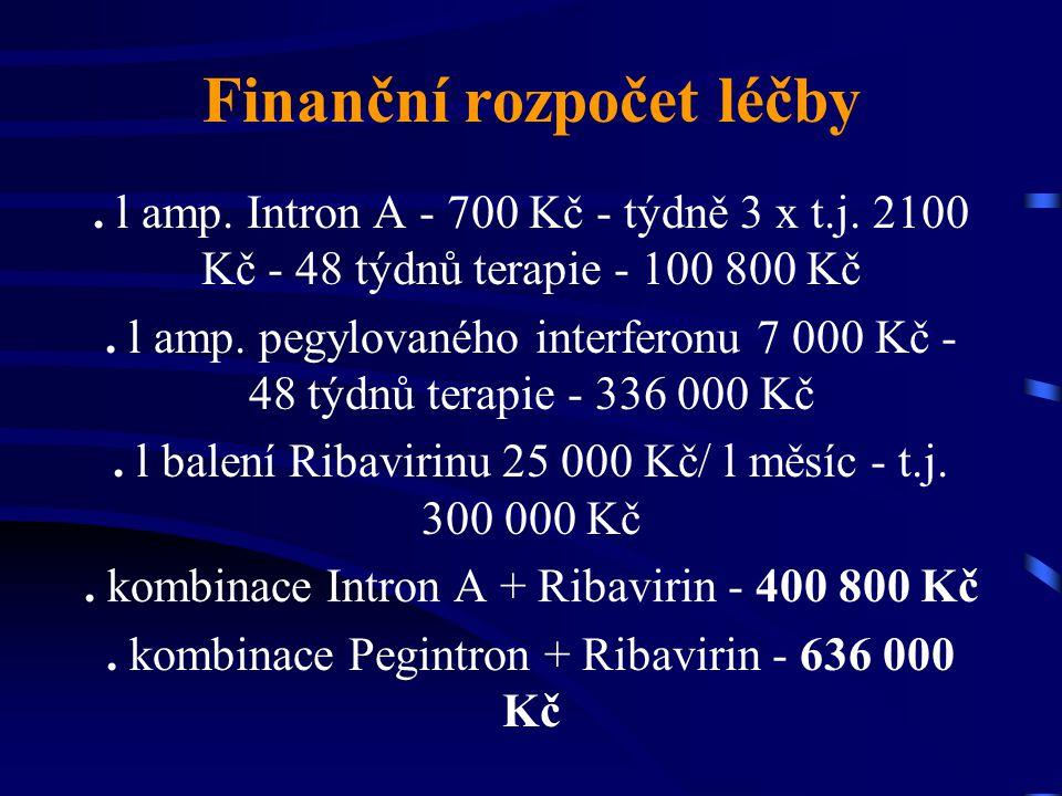 Finanční rozpočet léčby