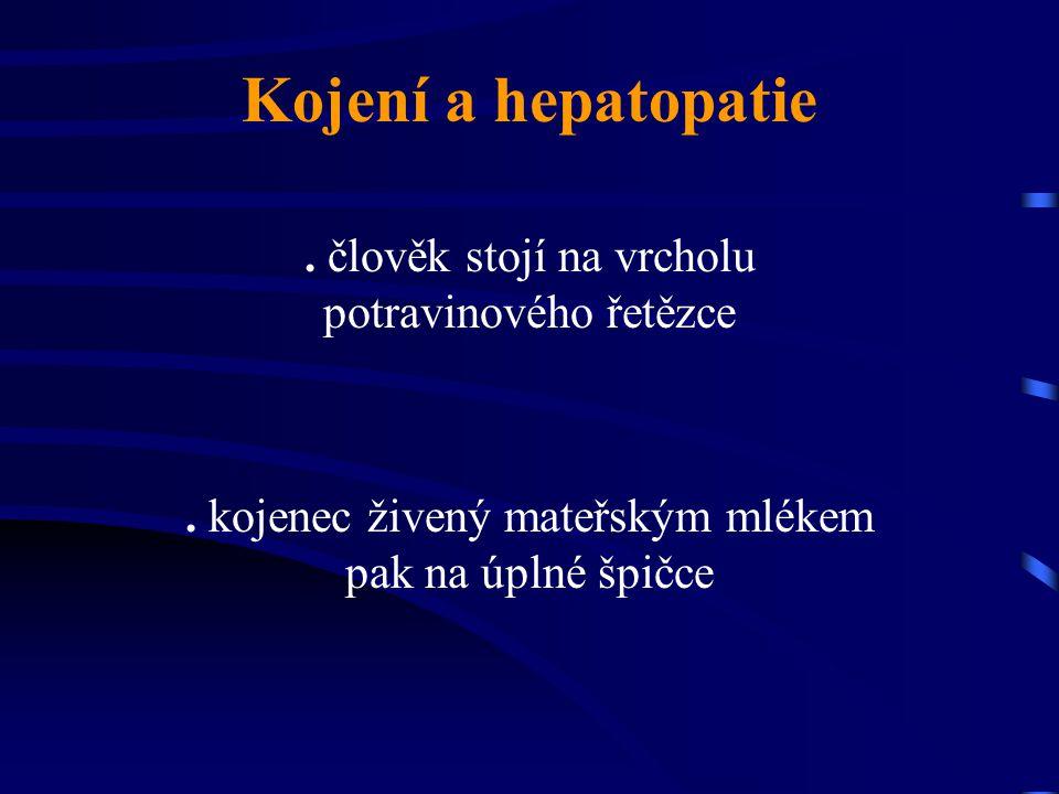 Kojení a hepatopatie . člověk stojí na vrcholu potravinového řetězce
