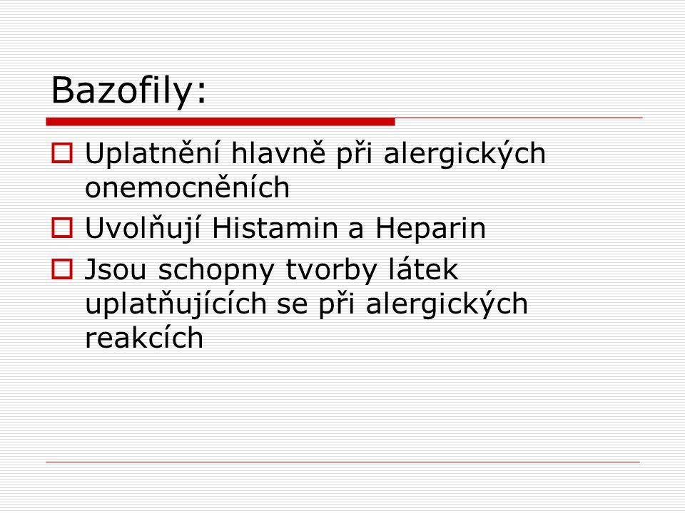 Bazofily: Uplatnění hlavně při alergických onemocněních