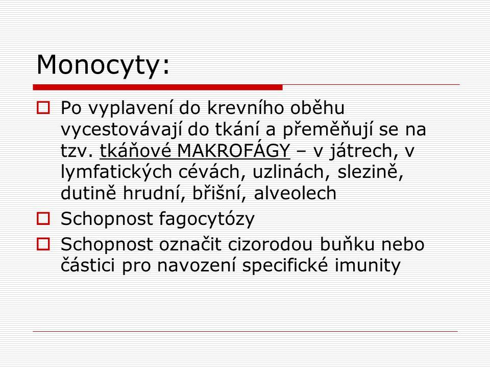 Monocyty: