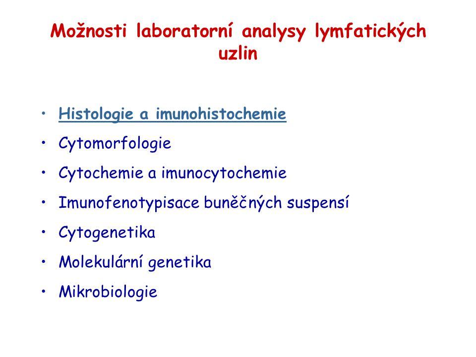 Možnosti laboratorní analysy lymfatických uzlin