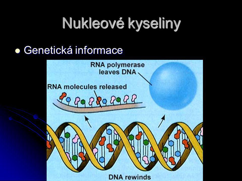 Nukleové kyseliny Genetická informace