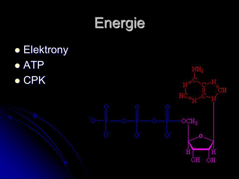 Energie Elektrony ATP CPK