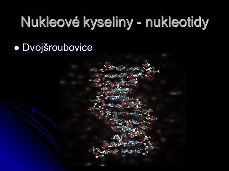 Nukleové kyseliny - nukleotidy