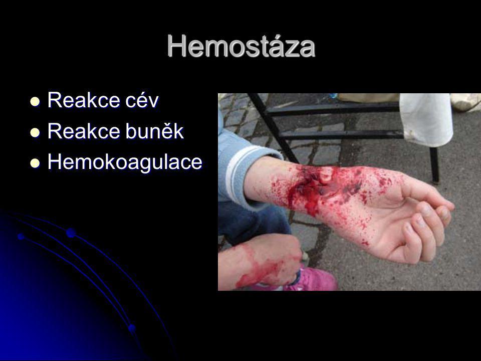 Hemostáza Reakce cév Reakce buněk Hemokoagulace