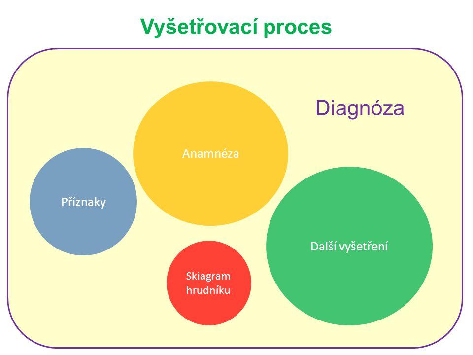 Vyšetřovací proces Diagnóza Anamnéza Příznaky Další vyšetření