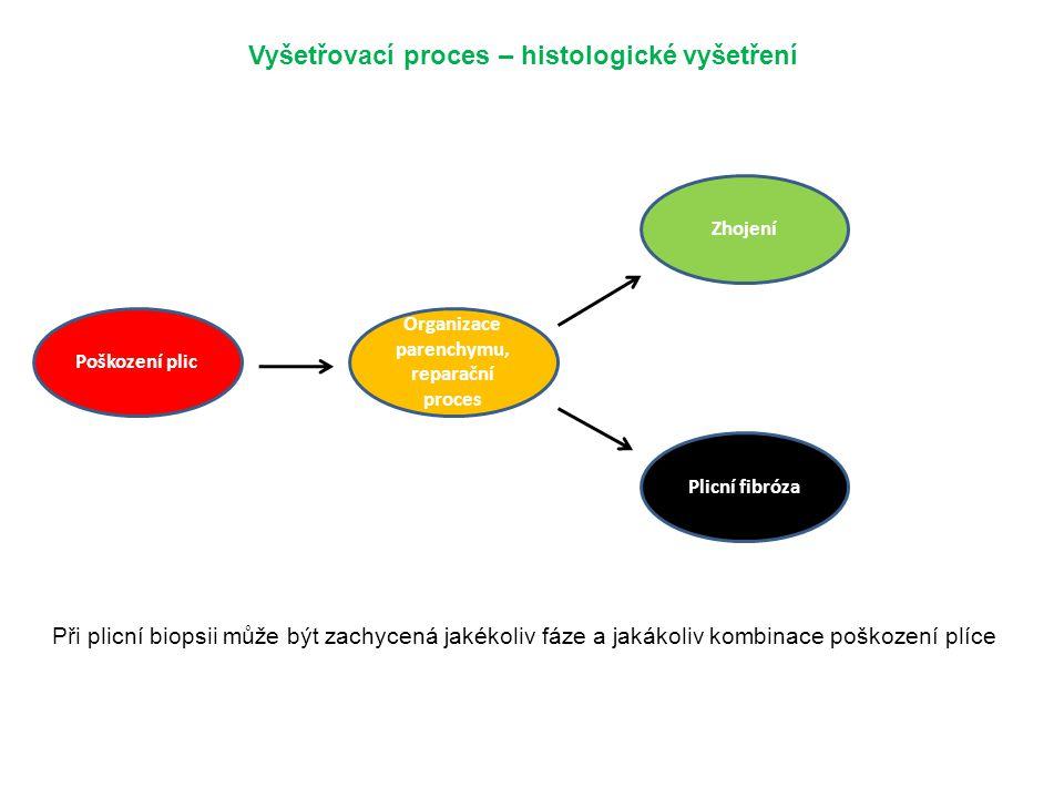 Vyšetřovací proces – histologické vyšetření