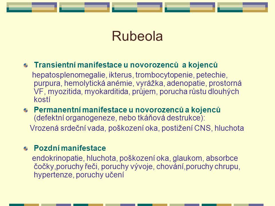 Rubeola Transientní manifestace u novorozenců a kojenců