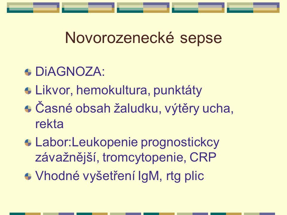 Novorozenecké sepse DiAGNOZA: Likvor, hemokultura, punktáty