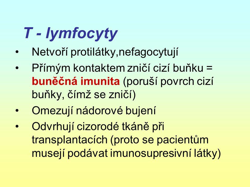 T - lymfocyty Netvoří protilátky,nefagocytují