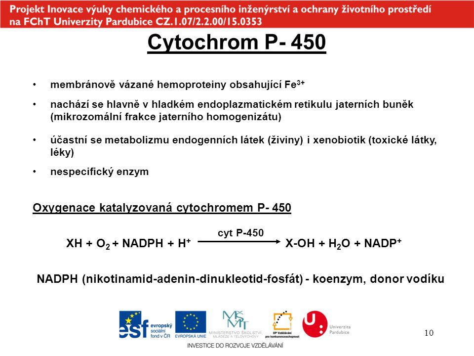 Cytochrom P- 450 Oxygenace katalyzovaná cytochromem P- 450