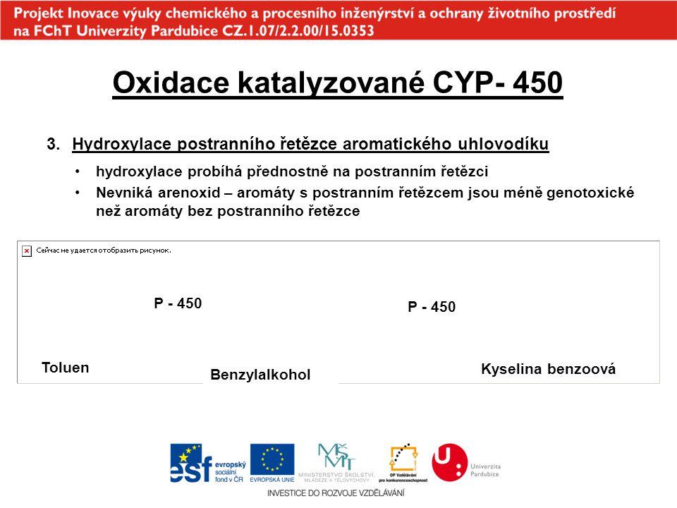 Oxidace katalyzované CYP- 450