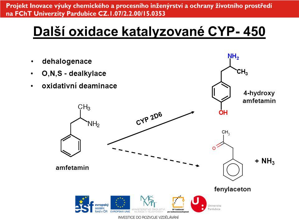 Další oxidace katalyzované CYP- 450