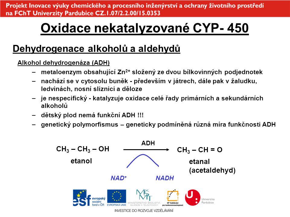 Oxidace nekatalyzované CYP- 450