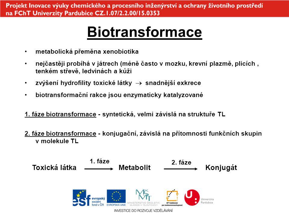 Biotransformace Toxická látka Metabolit Konjugát