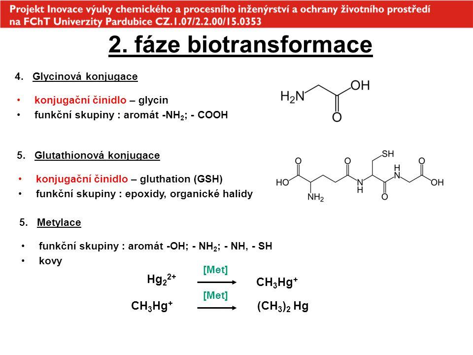 2. fáze biotransformace Hg22+ CH3Hg+ CH3Hg+ (CH3)2 Hg