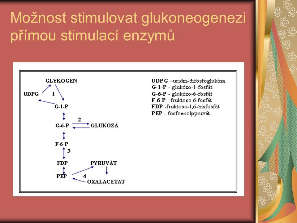 Možnost stimulovat glukoneogenezi přímou stimulací enzymů