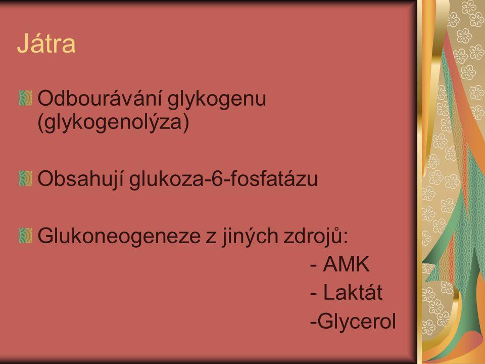 Játra Odbourávání glykogenu (glykogenolýza)