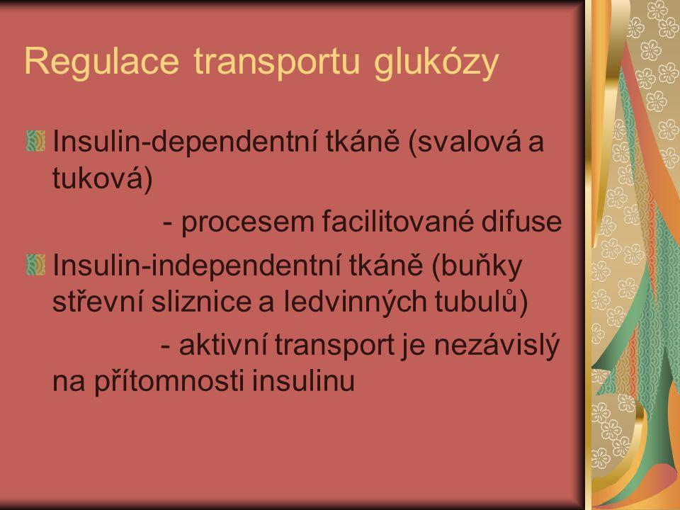 Regulace transportu glukózy