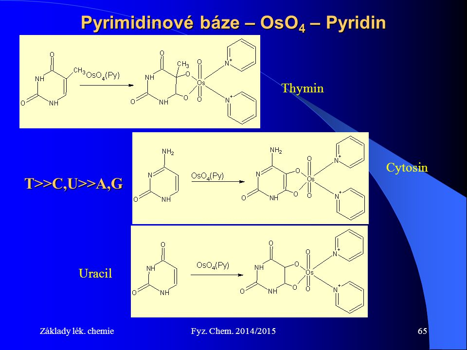 Pyrimidinové báze – OsO4 – Pyridin