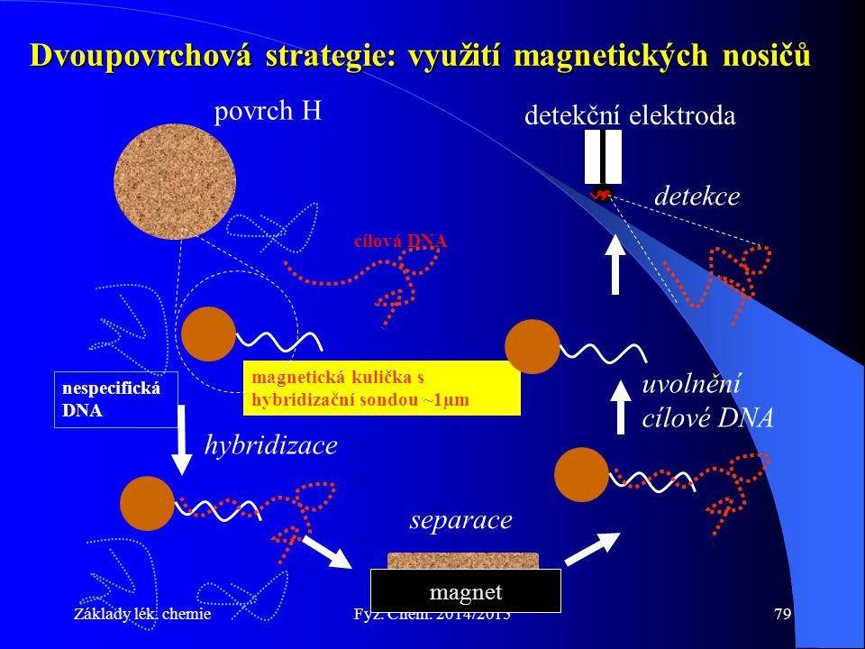 Dvoupovrchová strategie: využití magnetických nosičů
