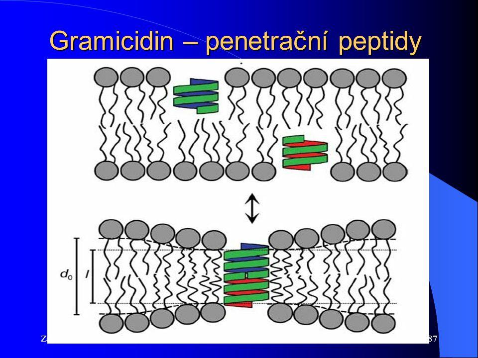Gramicidin – penetrační peptidy
