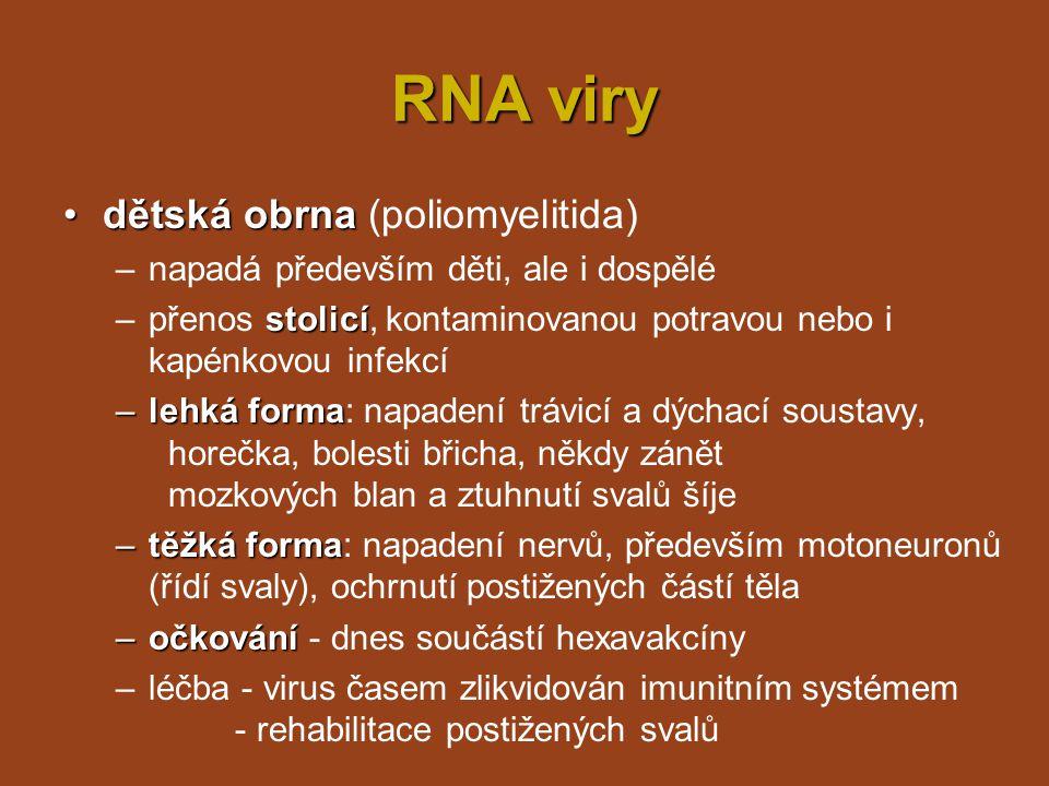 RNA viry dětská obrna (poliomyelitida)