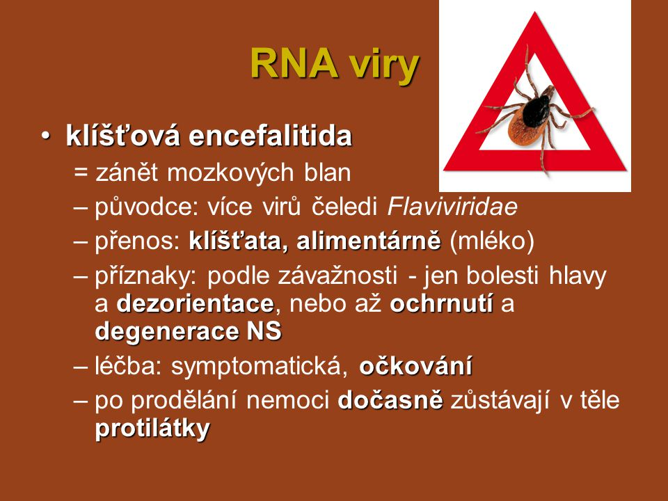 RNA viry klíšťová encefalitida = zánět mozkových blan