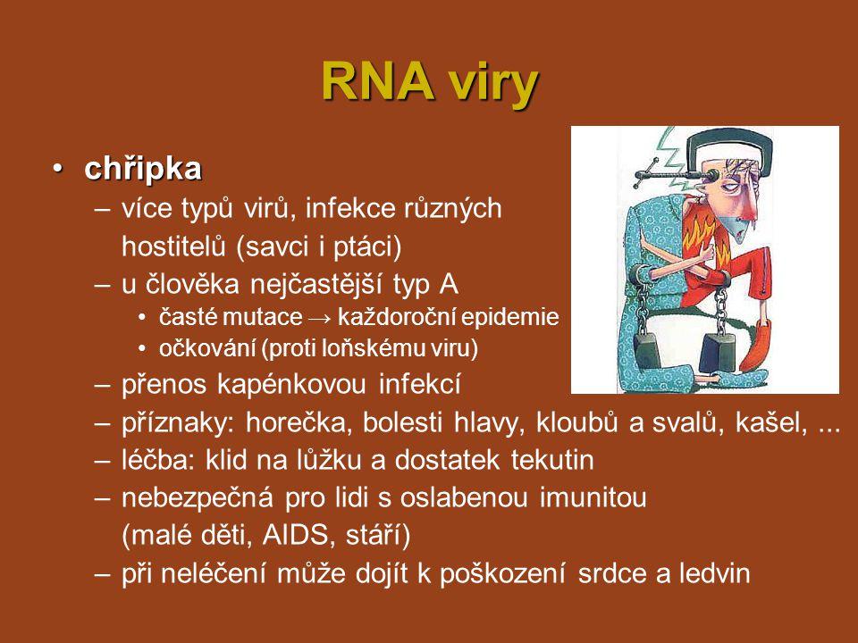 RNA viry chřipka více typů virů, infekce různých