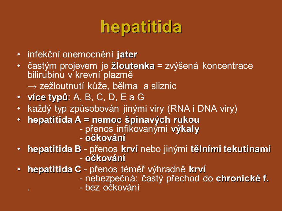 hepatitida infekční onemocnění jater