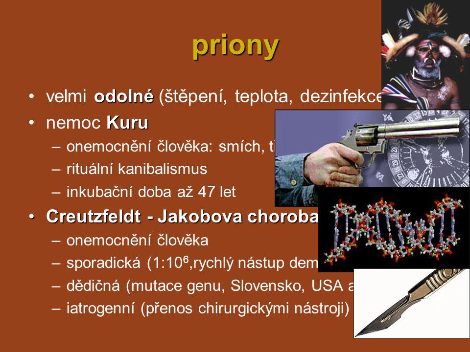 priony velmi odolné (štěpení, teplota, dezinfekce) nemoc Kuru