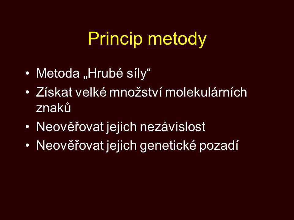 "Princip metody Metoda ""Hrubé síly"