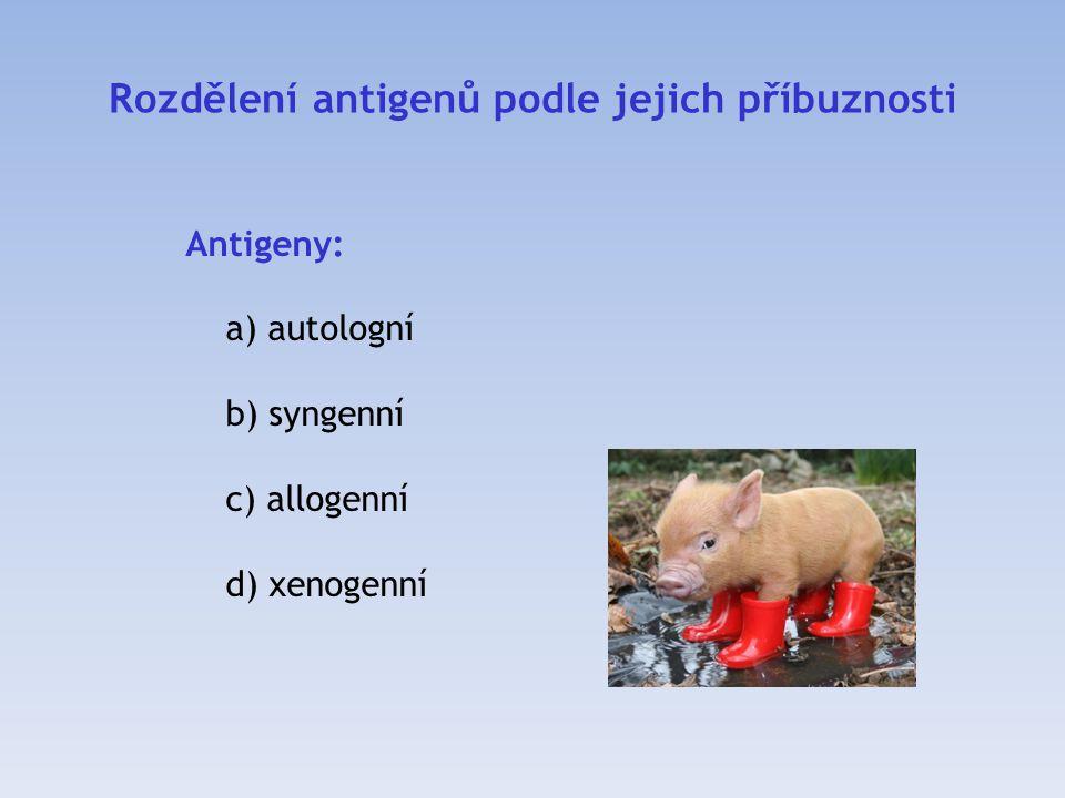 Rozdělení antigenů podle jejich příbuznosti
