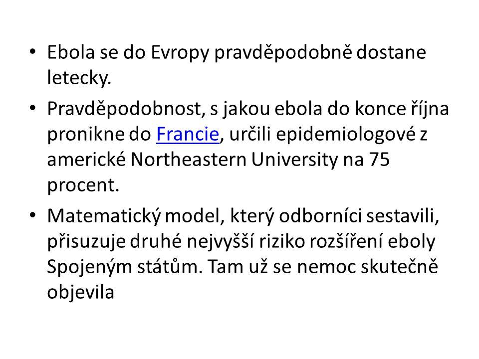 Ebola se do Evropy pravděpodobně dostane letecky.