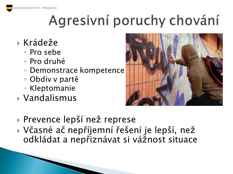 Agresivní poruchy chování