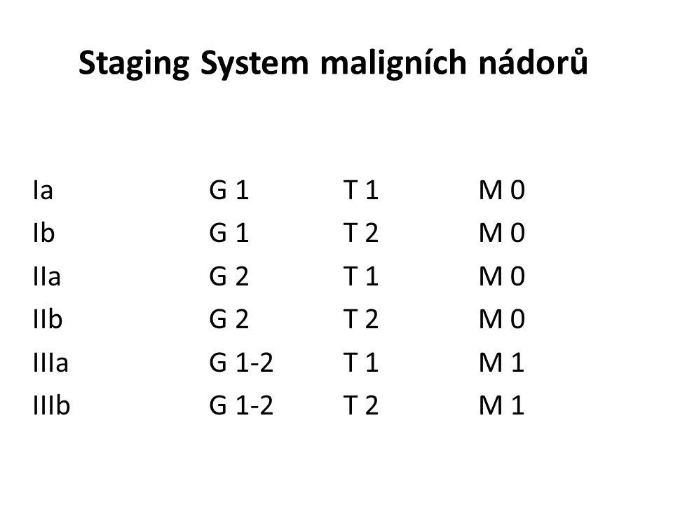 Staging System maligních nádorů